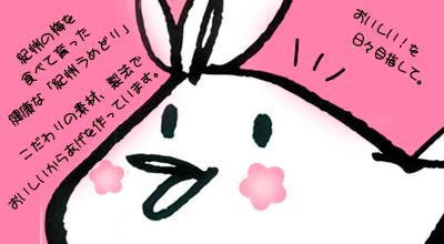 和歌山の特産品の梅エキスを食べて育った紀州うめどり等、こだわり